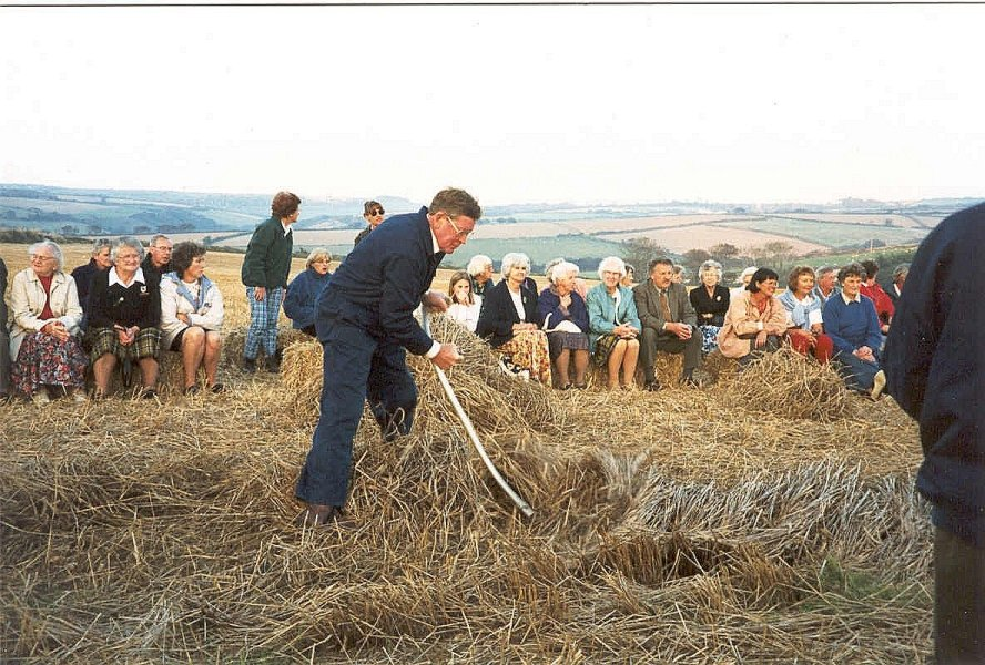 Cutting the last standing wheat at Trewollack in 1997 photograph: © Gillian Nott