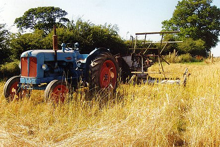 Tractor and Reaper used to harvest straw. Picture courtesy of Rosemary Sault