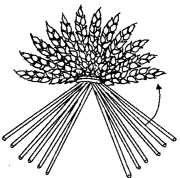 Drawing showing the straw that is to be lifted