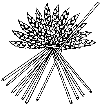 Drawing showing the lifted straw and the straw bent around it.